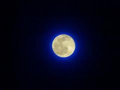 ウルフ・ムーン1月の満月