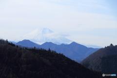 棡原からの富士
