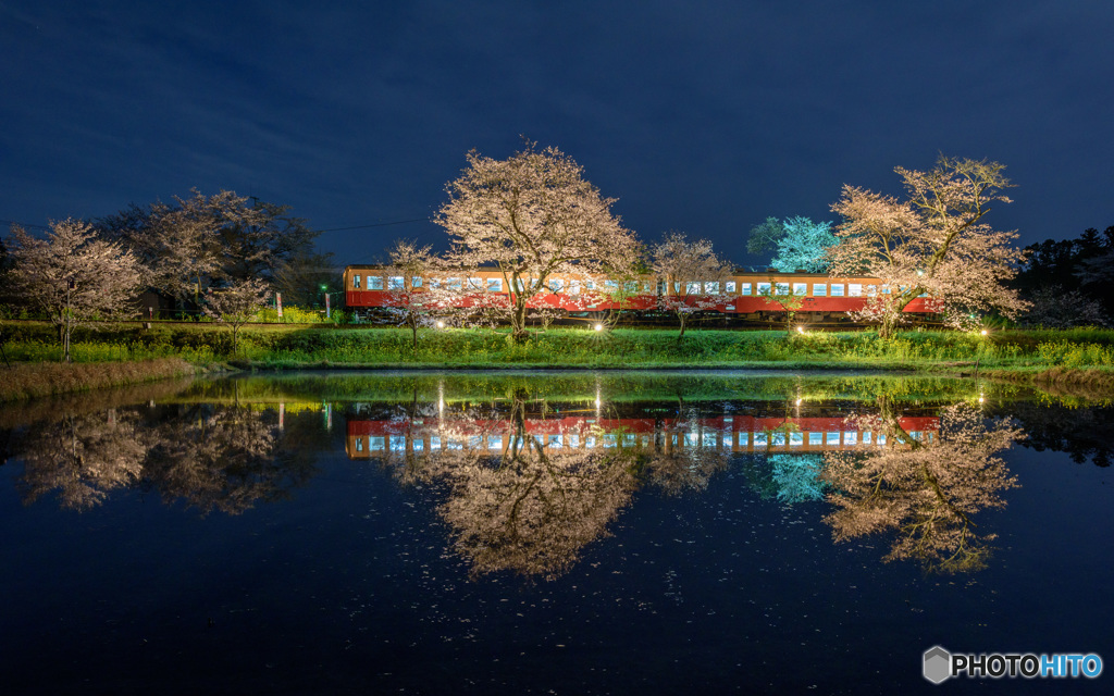 春は夜桜、飯給駅