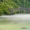 新緑の橋梁