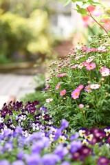 April Garden Ⅱ