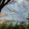 晩秋の里山