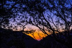 竜ヶ岳にて_2019年の私の初日の出・・・前