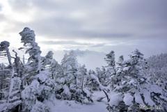 天上の頂_赤岳を望む