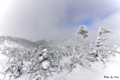 冬の嵐_北横岳山頂にて