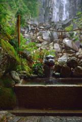 龍神さんの手水舎