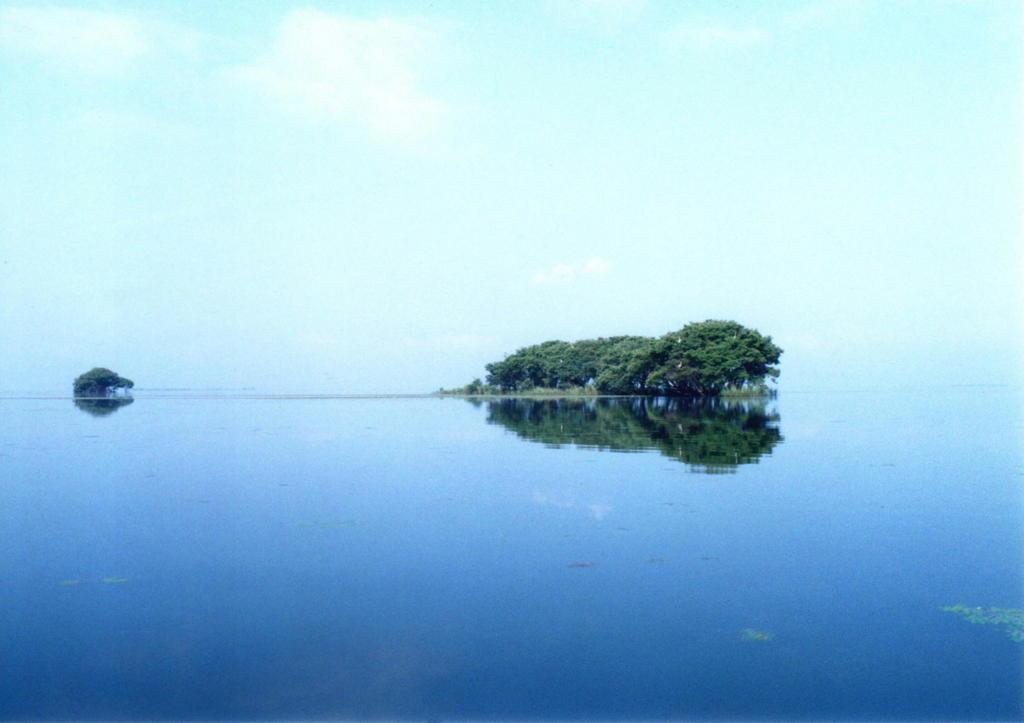 琵琶湖点景