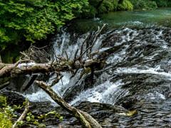 奥日光・龍頭の滝より少し上流にある名もなき小さな滝