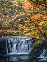 紅葉速報2:奥日光湯滝下流の小さな滝