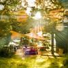 早朝の眩い木漏れ日が差す中禅寺湖・菖蒲ヶ浜キャンプ場