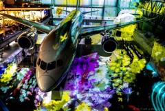 Boeing&Flower