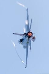 F-2バックショット