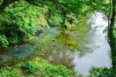 清流の湧き水