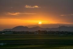 燕から見た沈む夕陽
