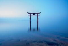 白髭神社の夜明け