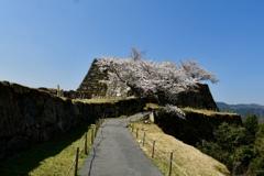 2020桜・古城