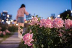 君は薔薇より・・・しい・・・かも