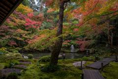 早秋の庭園…