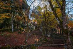 古刹の秋景