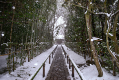 淡雪舞う 径