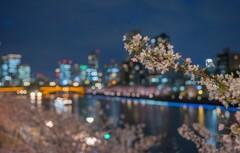 花冷えの夜風に…