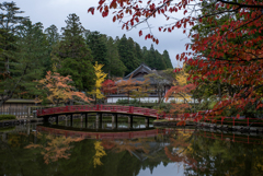 蓮池 太鼓橋の秋彩