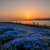 Sunset   -Blue jewelry-