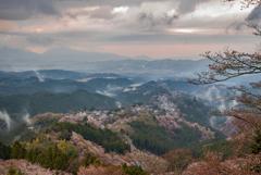 吉野山 春景