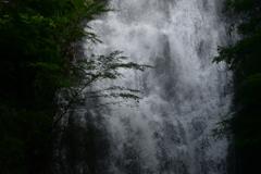 雨後の琴瀧
