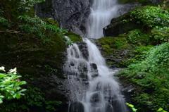 奈良県 ヌスット谷大滝