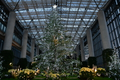 関西一華麗なクリスマスツリー 2018