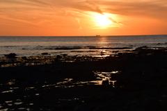 南紀周遊 枯れ木灘双島の夕焼け