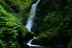 福井県大飯町 野鹿の瀧