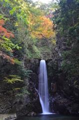 有馬温泉 紅葉と鼓ケ滝