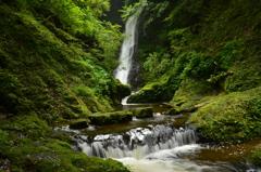 福井県 野鹿の滝