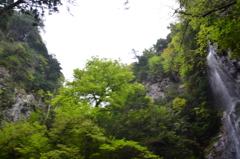 奈良県  御船の滝
