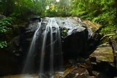 京都府 金引の滝