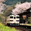 JR肥薩線嘉例川駅の春3