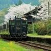 JR肥薩線嘉例川駅の春2