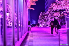 新宿小田急サザンテラス、ピンクリボン、イルミネーション