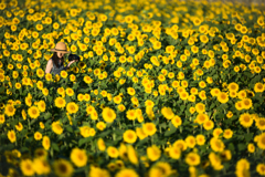 Overwhelmed yellow