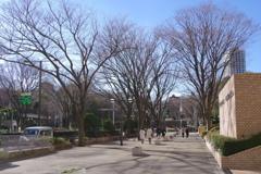 西新宿の冬景色