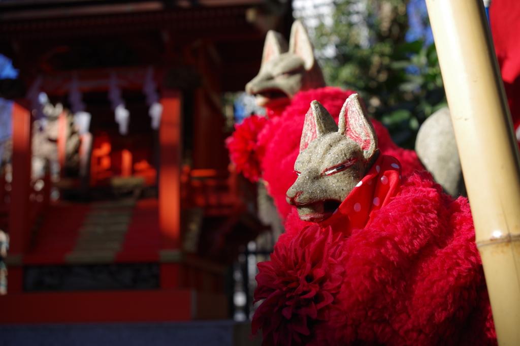 稲荷様の狐_新宿十二社熊野神社