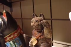猫に三味線_国立民族学博物館