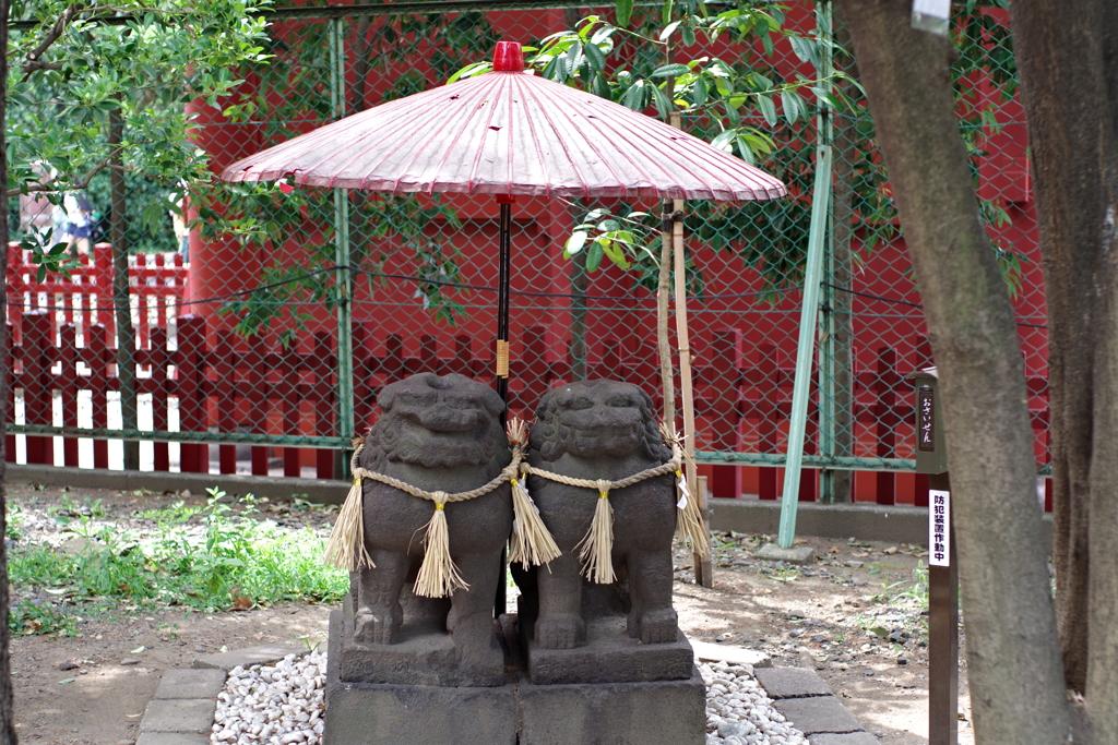 夫婦狛犬_浅草神社