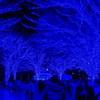 青の洞窟_代々木公園
