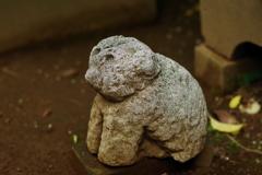 狛犬_渋谷氷川神社