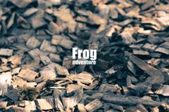 Frog adventure2