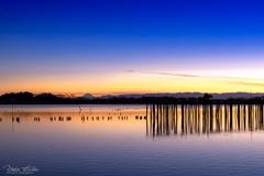 多々良沼の夕景