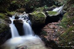 黒山三滝の渓流